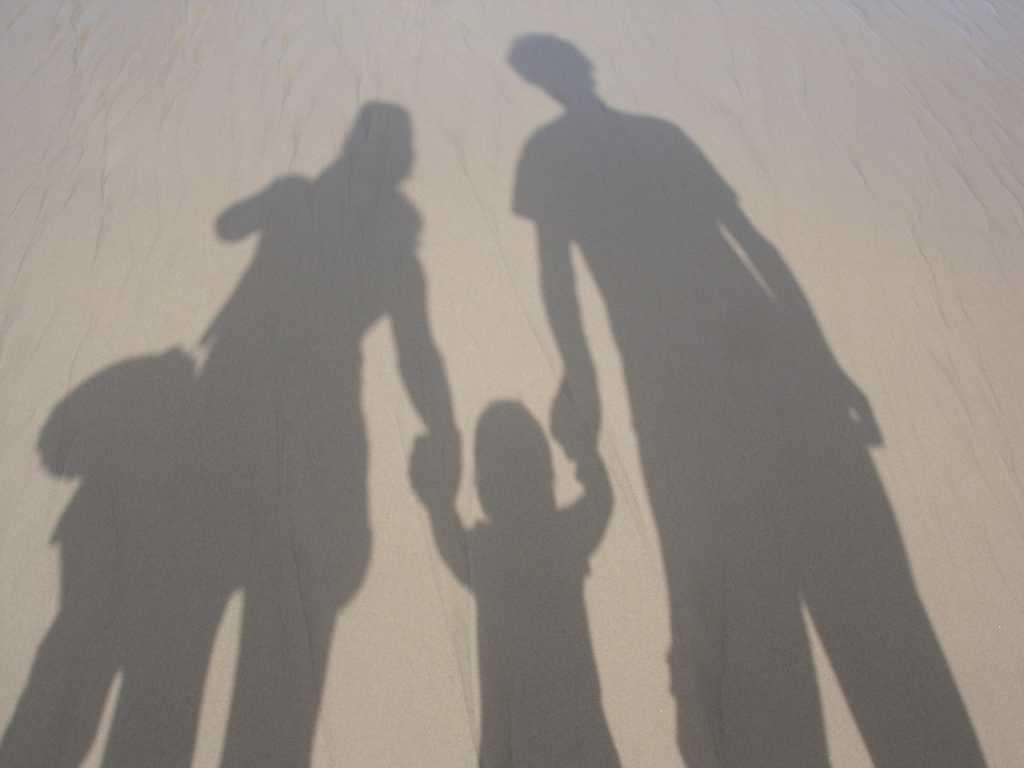 Family 005