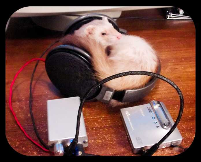 mouse and headphone